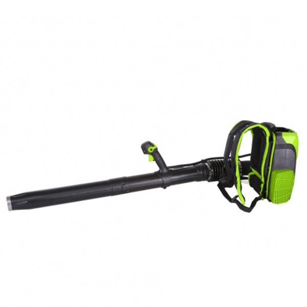 greenworks bladblazer